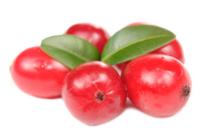 Large Cranberries with Green Leaves Isolated on White Background